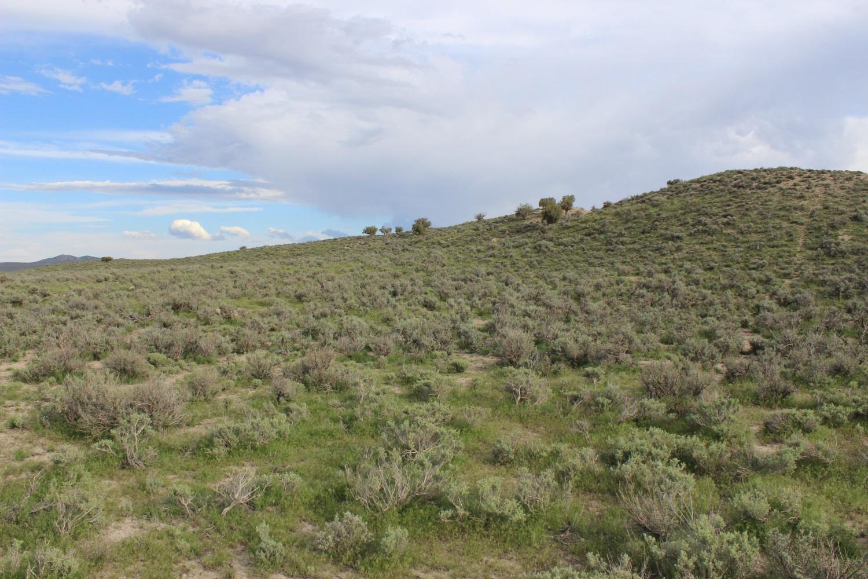 20 acres box elder county utah u s dream land for Utah rural housing